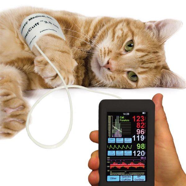 Измерение давления относится к вспомогательным диагностическим методам