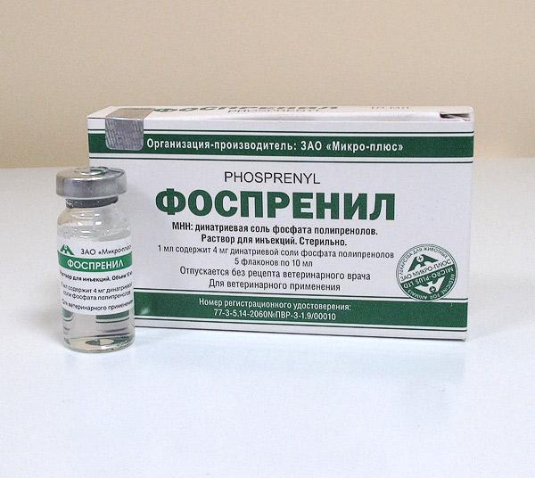 Иммуномодулятор «Фоспренил» — инновационный препарат для лечения ФИП