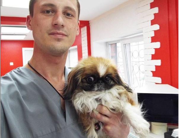 Ветеринара необходимо посещать раз в полгода