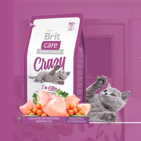 Корм Brit для котят