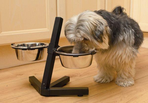 По мере роста щенка регулируется положение мисок на подставке