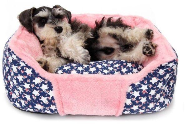 У собаки обязательно должно быть своё уютное местечко для отдыха