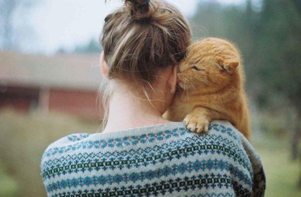 Кошка-человек любит обустраивать гнездо в постели хозяина