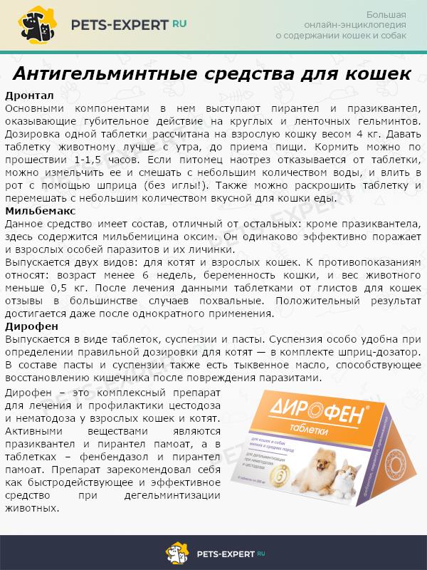 Антигельминтные средства для кошек