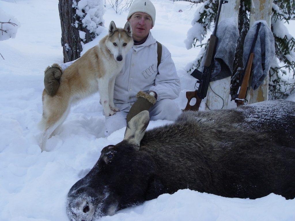 Большинство охот заканчиваются успешно именно благодаря представителям породы