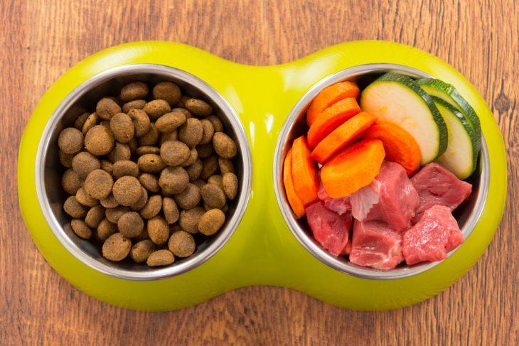 Выбор между натуральным и готовым кормом осуществляется хозяином исходя из своих ресурсов и предпочтений животного